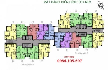 Thiết kế căn hộ tòa N03
